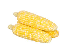 Two color corns isolated on white Stock Photo