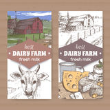Two color dairy labels with farmhouse, cow, cheese, milk cup on white. Stock Image