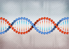 DNA two color Royalty Free Stock Photo
