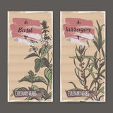 Two color labels with basil and tarragon sketch. Royalty Free Stock Photo