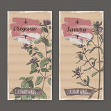 Two color labels with oregano and savory sketch. Stock Image