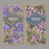 Two color labels with Sweet iris and Rose geranium. Royalty Free Stock Photography