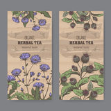 Two color vintage labels for burdock and chicory herbal tea. Set of two color vintage labels for burdock and chicory herbal tea. Placed on cardboard texture Royalty Free Stock Photography