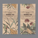 Two color vintage labels for ginger and ginseng herbal tea. Royalty Free Stock Photo
