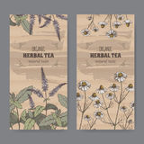 Two color vintage labels for peppermint and chamomile herbal tea. Stock Image