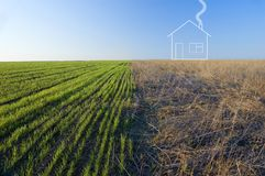 Two-colored field and house Stock Image