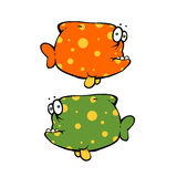 Two colored fish. Fish would be happy to say something, but they are dumb Royalty Free Stock Photo