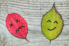 Two colorful autumn leaves with face emotions - sad and happy. Black marker on the red and green leaves. Characters on the old wooden background stock photo