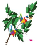 Two colorful birds on a branch of tree. Illustration of two colorful birds on a branch of tree stock illustration