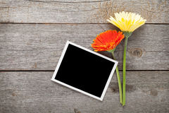 Two colorful gerbera flowers and photo frame Stock Images