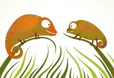 Two Colorful Lizards Sitting on Grass Background Stock Photography