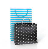 Two colorful paper bags for shopping Stock Images