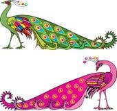 Two colorful peackoks Stock Photos