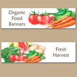 Two colorful watercolor banners with fresh organic food. Hand drawn illustrations of fresh vegetables Stock Photography