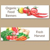 Two colorful watercolor banners with fresh organic food. Hand drawn illustrations of fresh vegetables Royalty Free Stock Photos