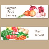 Two colorful watercolor banners with fresh organic food. Hand drawn illustrations of fresh vegetables Stock Image