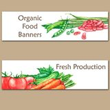 Two colorful watercolor banners with fresh organic food. Hand drawn illustrations of fresh vegetables Royalty Free Stock Photo