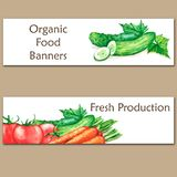 Two colorful watercolor banners with fresh organic food. Hand drawn illustrations of fresh vegetables Royalty Free Stock Image