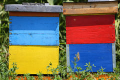 Two colorful wooden beehives Stock Photography