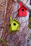 Two colorful wooden birdhouses Stock Image