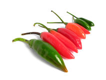Two colors chilies on line Stock Photo