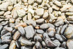 Two colors of wet stone at the coastline Royalty Free Stock Photo