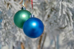 Two colour balls on a snow-covered tree Stock Images