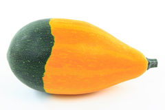 Two coloured smooth skin squash. Royalty Free Stock Image