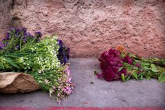 Two flower bushes for alformbra decoration on the street, Antigua, Guatemala. Two colourful flower bushes for alformbra decoration on the street, Antigua royalty free stock photo