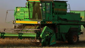Two Combine Close-up. Autumn. Harvest time. Two harvester working in the field stock footage