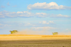Two combine harvesters are working on harvesting in the field. Agriculture machine Stock Photos