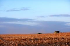 Two harvesters working in a maize field in fall Royalty Free Stock Photo