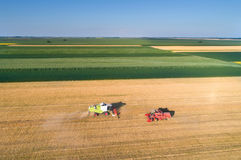 Two combine harvesting wheat field Royalty Free Stock Image