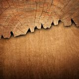 Two combined wooden elements for design and interior with wooden. Background or texture vector illustration