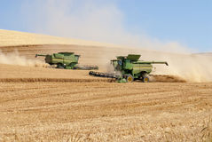 Two combines harvesting wheat in the northwest Royalty Free Stock Photos