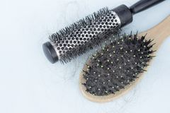 Two combs with loose hair, concept of hair loss, hair care stock image