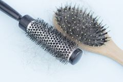 Two combs with loose hair, concept of hair loss, hair care royalty free stock images