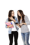 Two communicating teenage students with a smartpho Stock Photo