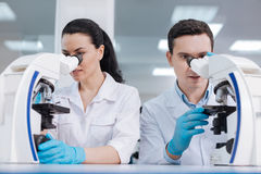Two competent lab assistants looking into microscope. Work together. Very attentive male person keeping mouth opened, touching stage while discovering new royalty free stock image
