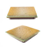 Two computer chip closeup Stock Photos