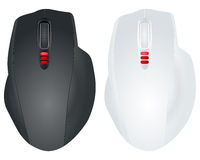 Two computer mouse Royalty Free Stock Images