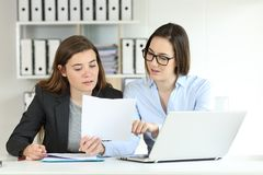 Office workers coworking comparing documents. Two concentrated office workers coworking comparing documents stock photo