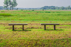 Two Concrete Benches on Green Meadow.  stock photos