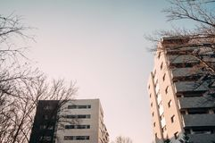 Two Concrete Buildings Among Trees royalty free stock photos