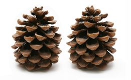 Two Cones Stock Photo