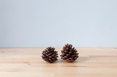 Two cones decorate on the table Stock Images