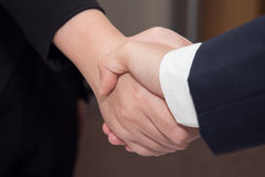 Two confident Businessman and businesswoman shaking hands Stock Photos