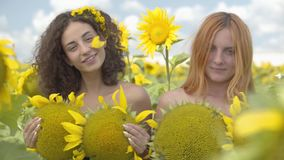 Two confident lovely girls looking at the camera smiling standing on the sunflower field covering bodies with sunflowers