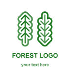 Two Coniferous Forest Trees Logo. Fir and pine tree minimalist logo concept. Linear logotype template with two coniferous forest trees. Suitable as a forestry Stock Photography