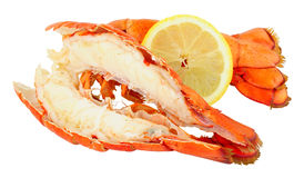 Two cooked Lobster Tails Stock Images